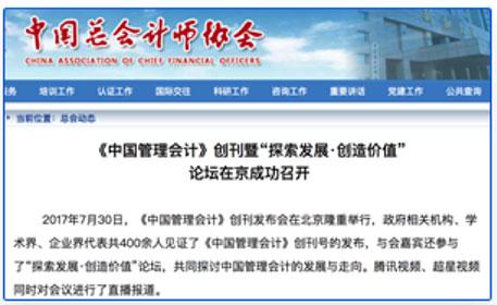 中国总会计师协会